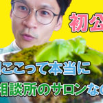 【YouTube結婚相談所】初公開!!結婚相談所のサロンってどんな感じなの?!
